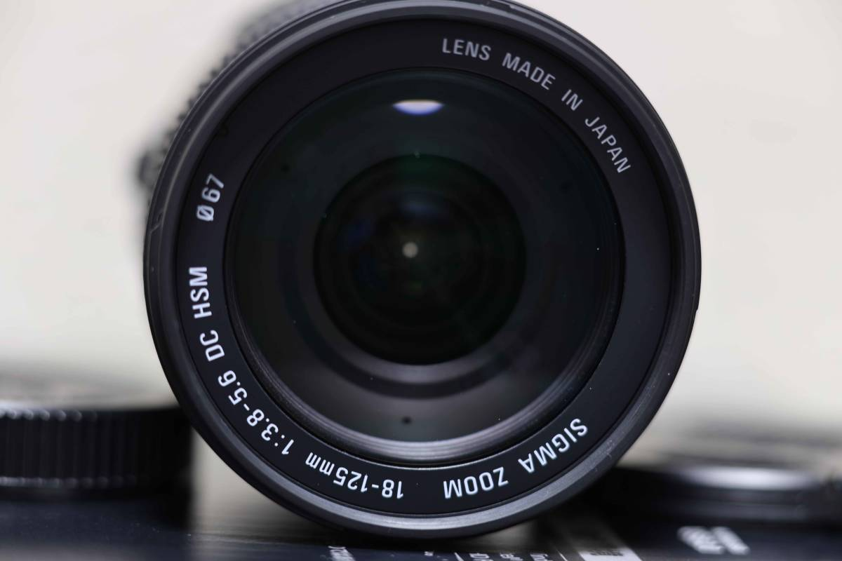 SIGMA 18-125mm F3.8-5.6 DC HSM Aマウント for SONY