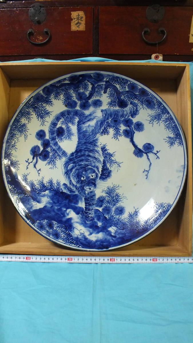 古伊万里 染付 松上の虎図大皿 虎 直径約46cm 箱付