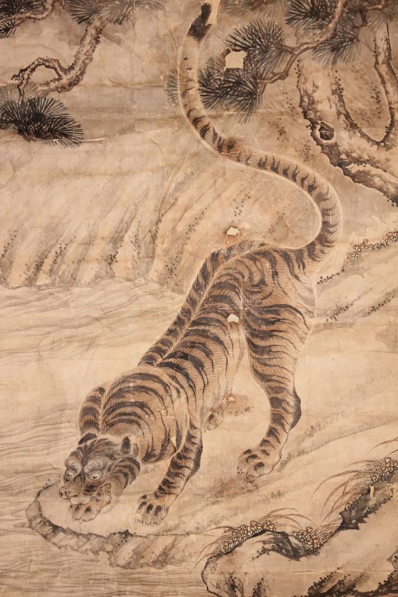まくり 猛虎図 大幅 110㎝幅 / (検)古画・江戸期
